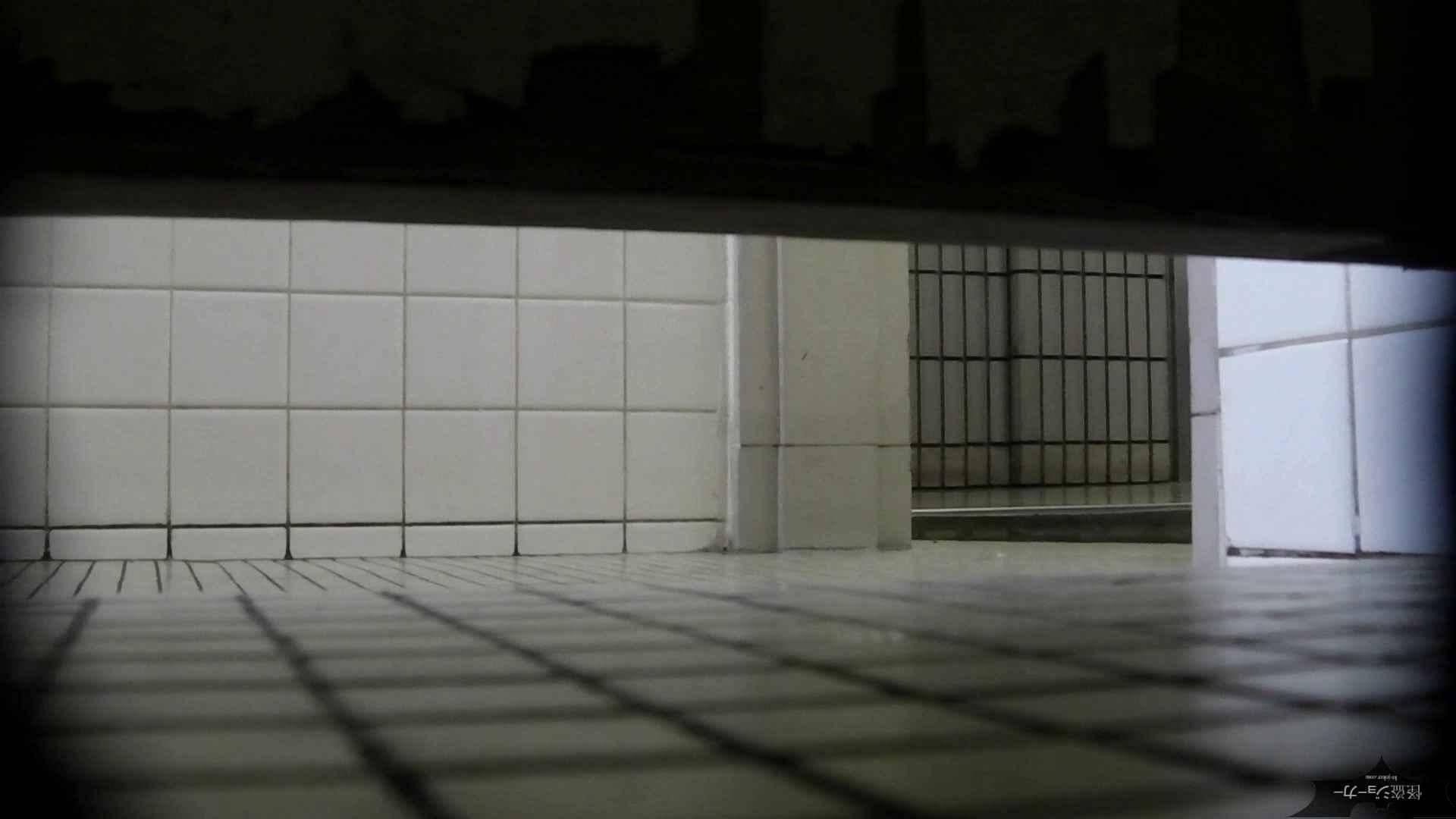 【美しき個室な世界】洗面所特攻隊 vol.051 丸見え おめこ無修正動画無料 100枚 45
