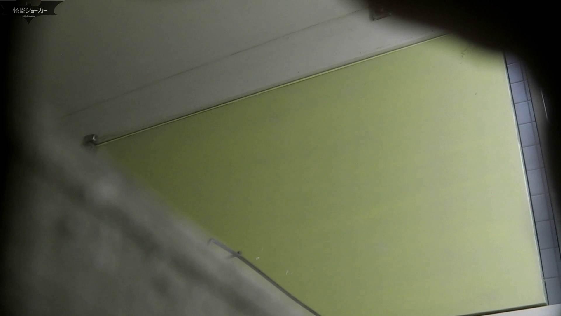 【美しき個室な世界】洗面所特攻隊 vol.051 お姉さんのSEX ぱこり動画紹介 100枚 46