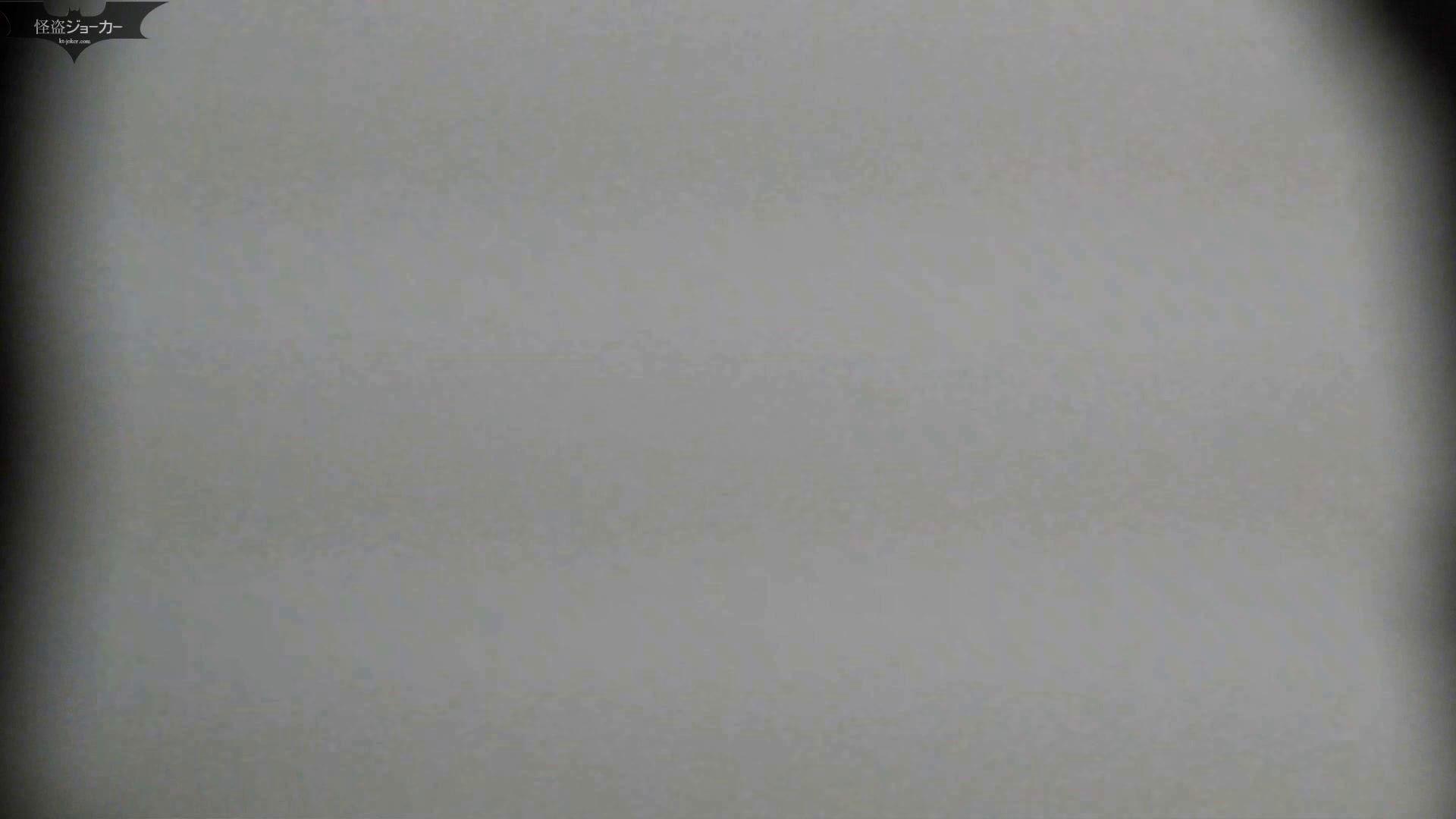 【美しき個室な世界】洗面所特攻隊 vol.051 お姉さんのSEX ぱこり動画紹介 100枚 67