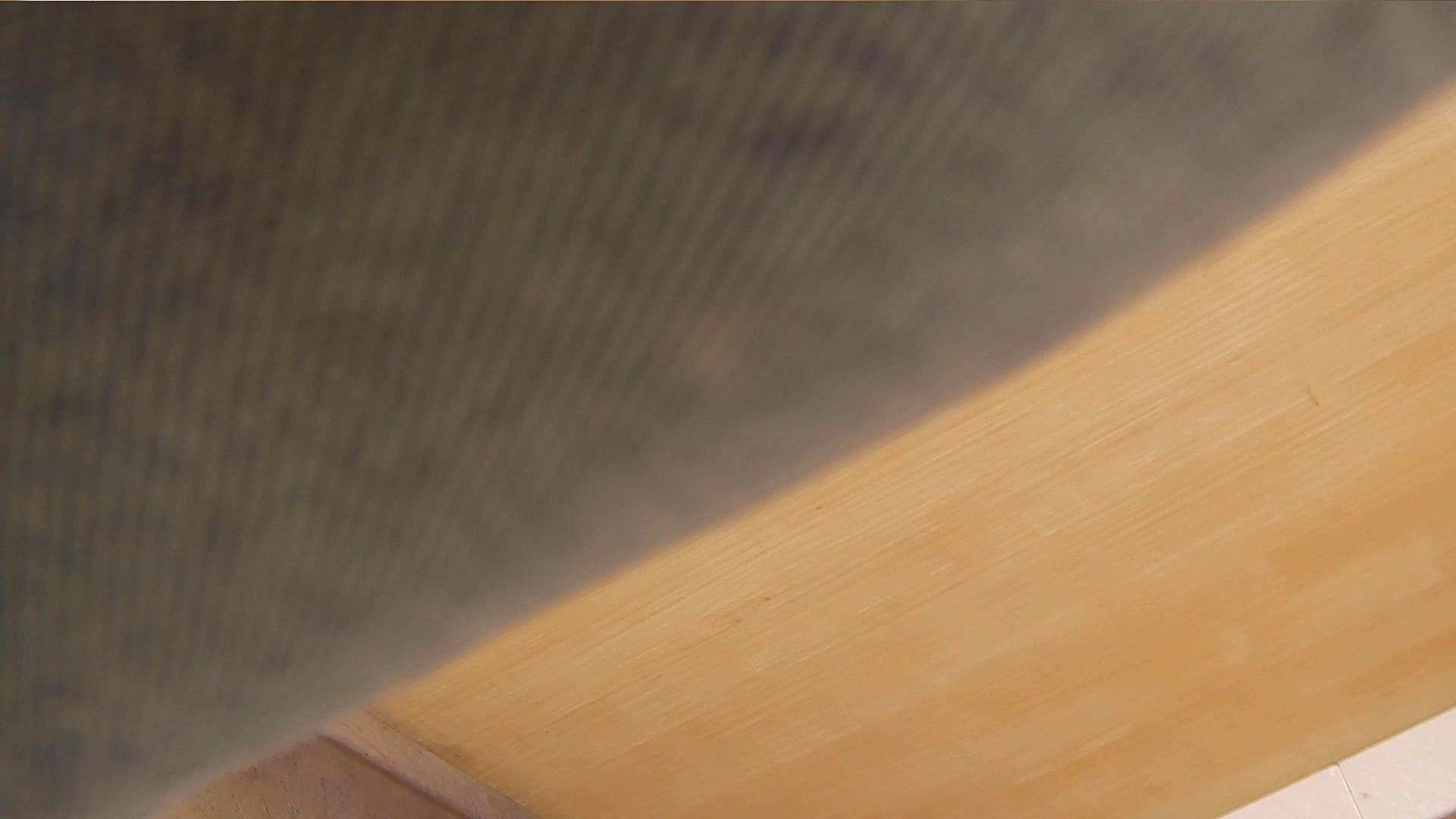 阿国ちゃんの「和式洋式七変化」No.1 お姉さんのSEX おまんこ無修正動画無料 89枚 53