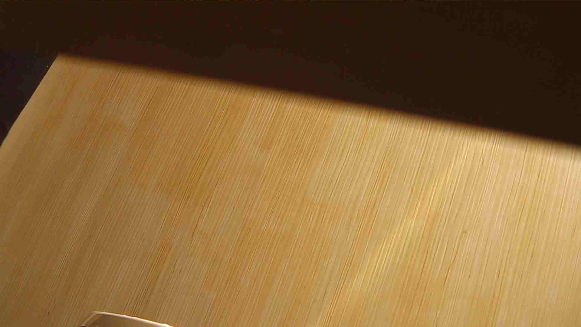 阿国ちゃんの「和式洋式七変化」No.1 和式便所 スケベ動画紹介 89枚 64