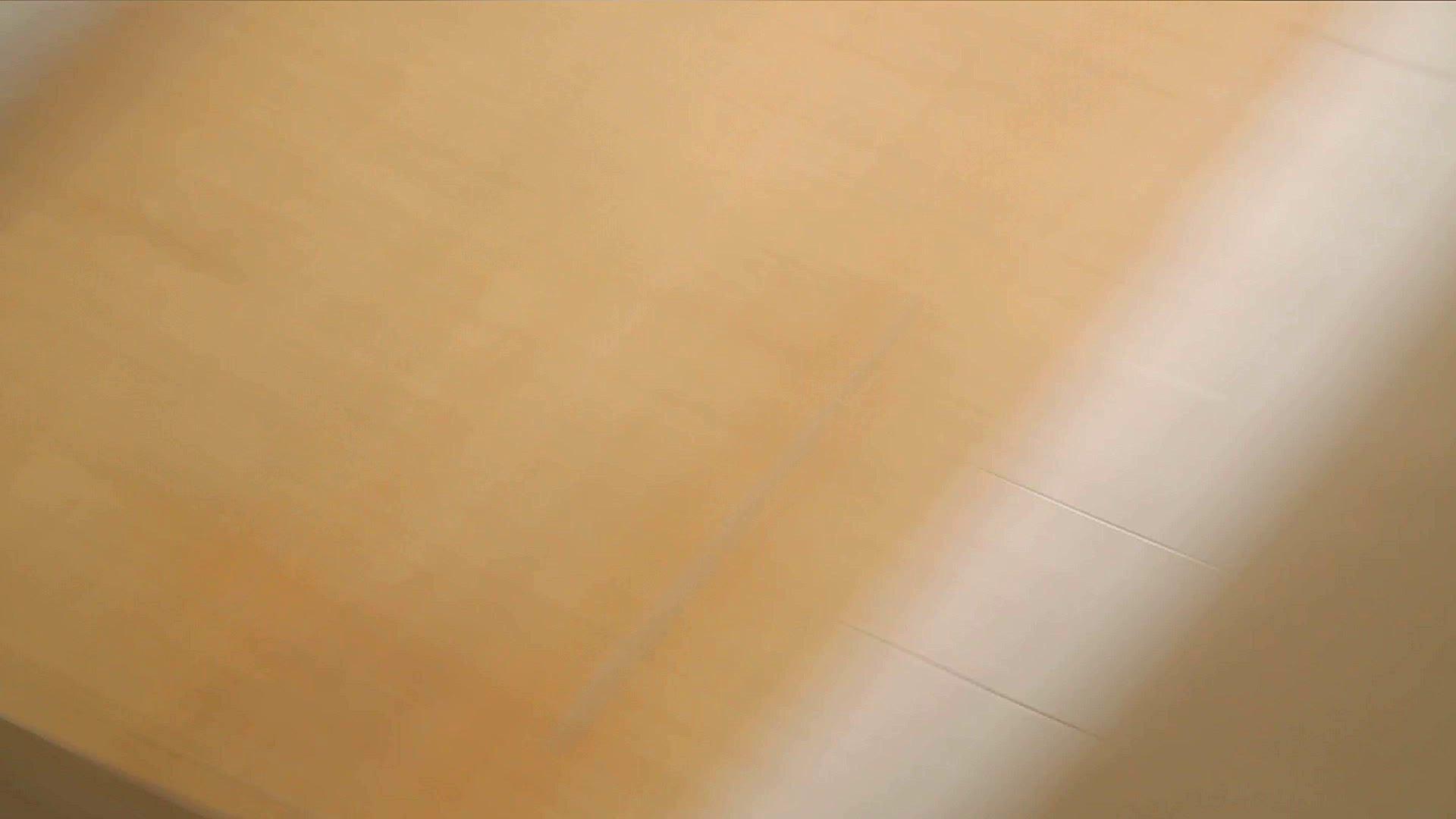 阿国ちゃんの「和式洋式七変化」No.1 盛合せ | 洗面所のぞき  89枚 76