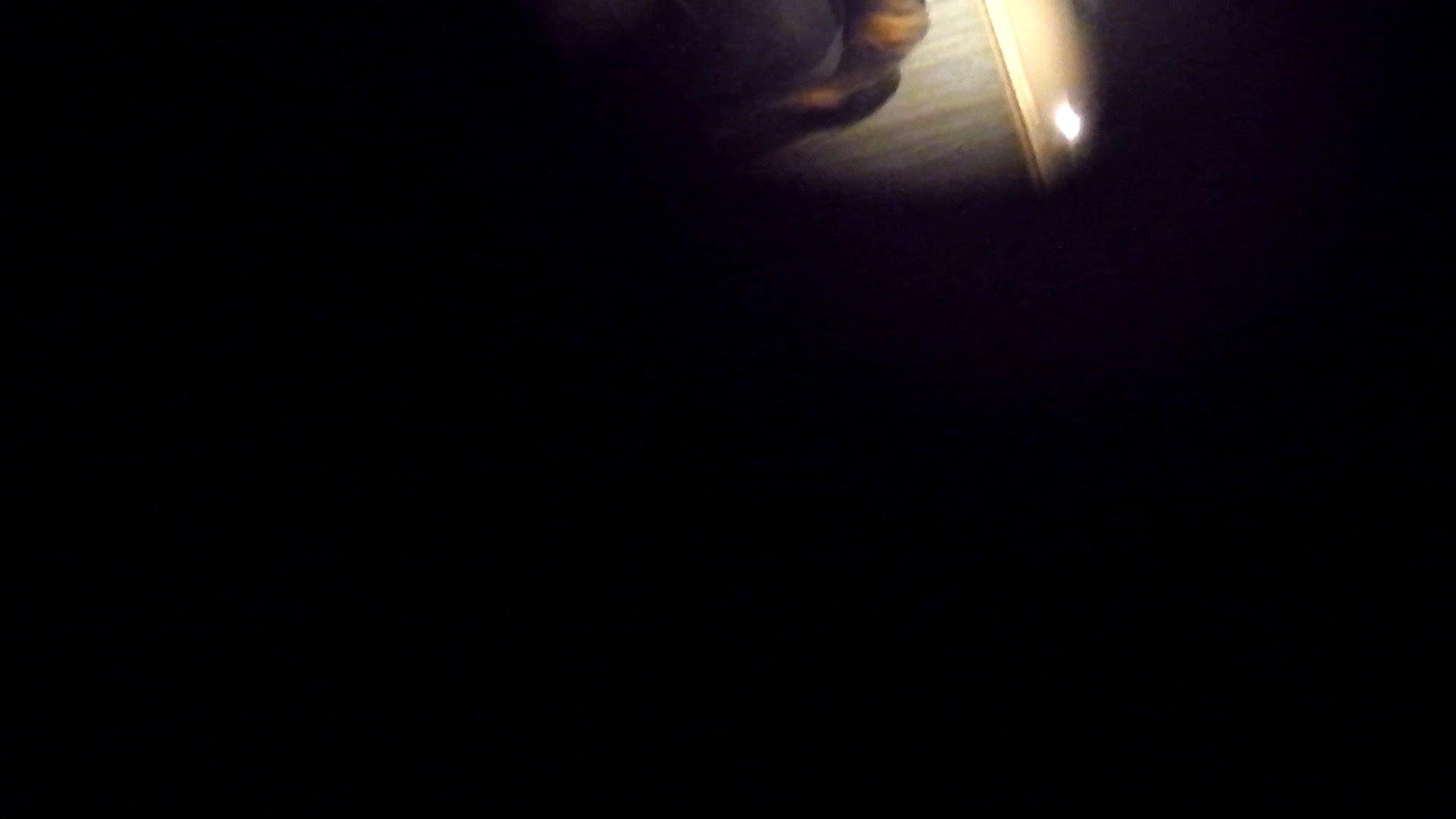 阿国ちゃんの「和式洋式七変化」No.9 お姉さんのSEX ぱこり動画紹介 98枚 16