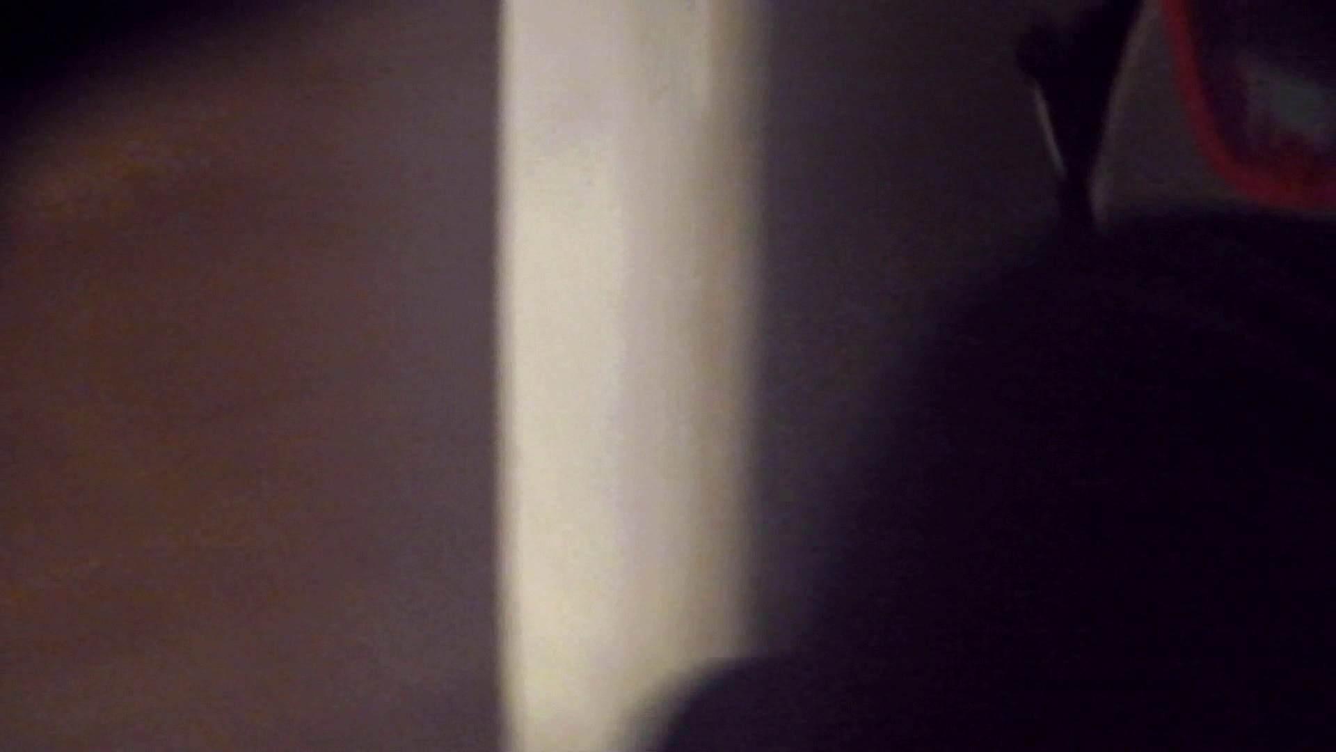 阿国ちゃんの「和式洋式七変化」No.9 お姉さんのSEX ぱこり動画紹介 98枚 28