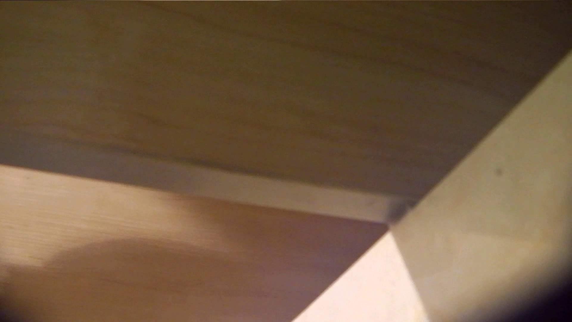 阿国ちゃんの「和式洋式七変化」No.9 お姉さんのSEX ぱこり動画紹介 98枚 52