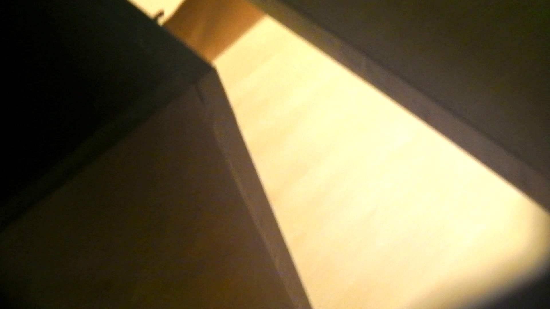 阿国ちゃんの「和式洋式七変化」No.14 丸見え おまんこ無修正動画無料 75枚 75