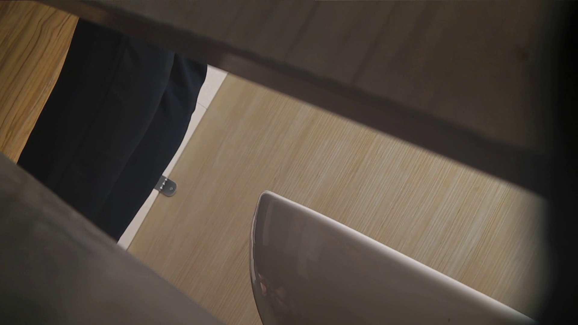 阿国ちゃんの「和式洋式七変化」No.18 iBO(フタコブ) 丸見え セックス無修正動画無料 105枚 98