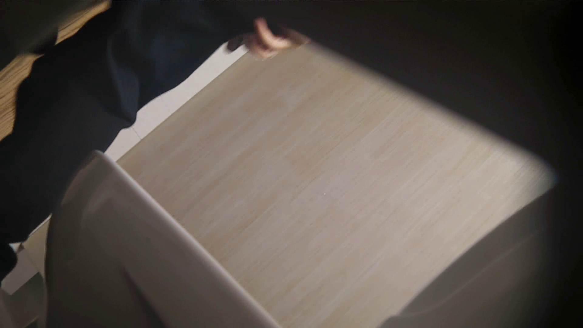 阿国ちゃんの「和式洋式七変化」No.18 iBO(フタコブ) 盛合せ AV無料 105枚 99