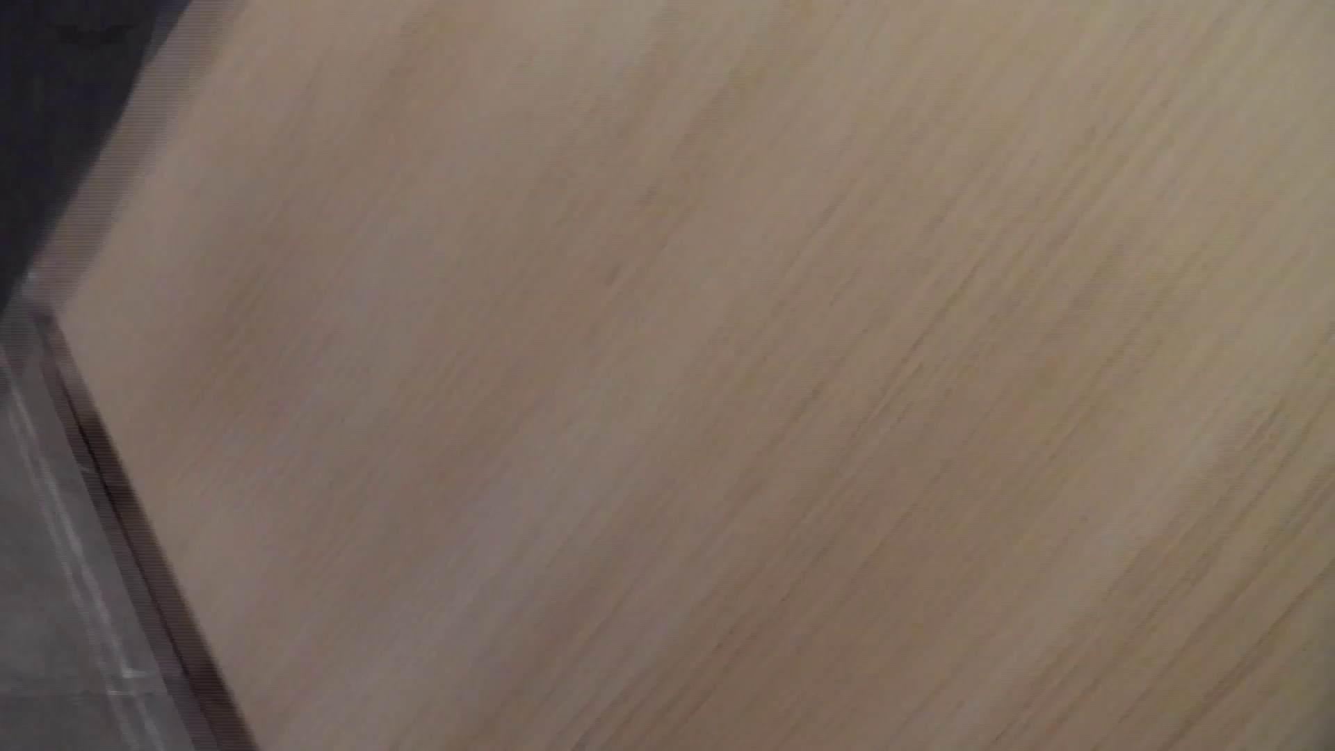 和式洋式七変化 Vol.31 洋式だけど丸見えですっ!! 盛合せ 濡れ場動画紹介 104枚 18
