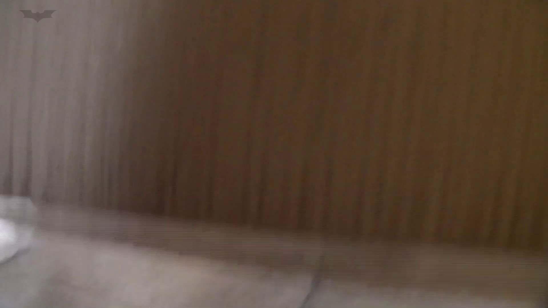 和式洋式七変化 Vol.32 綺麗な子連続登場 お姉さんのSEX ワレメ動画紹介 93枚 81