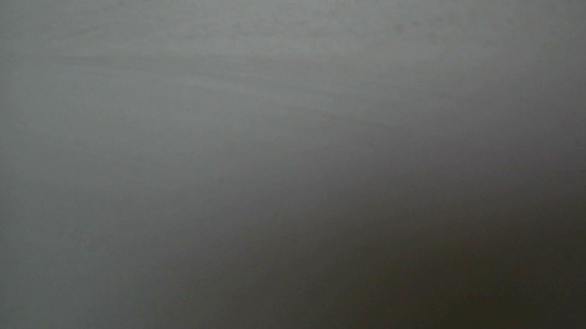 世界の射窓から ステーション編 vol.1 お姉さんのSEX  89枚 80