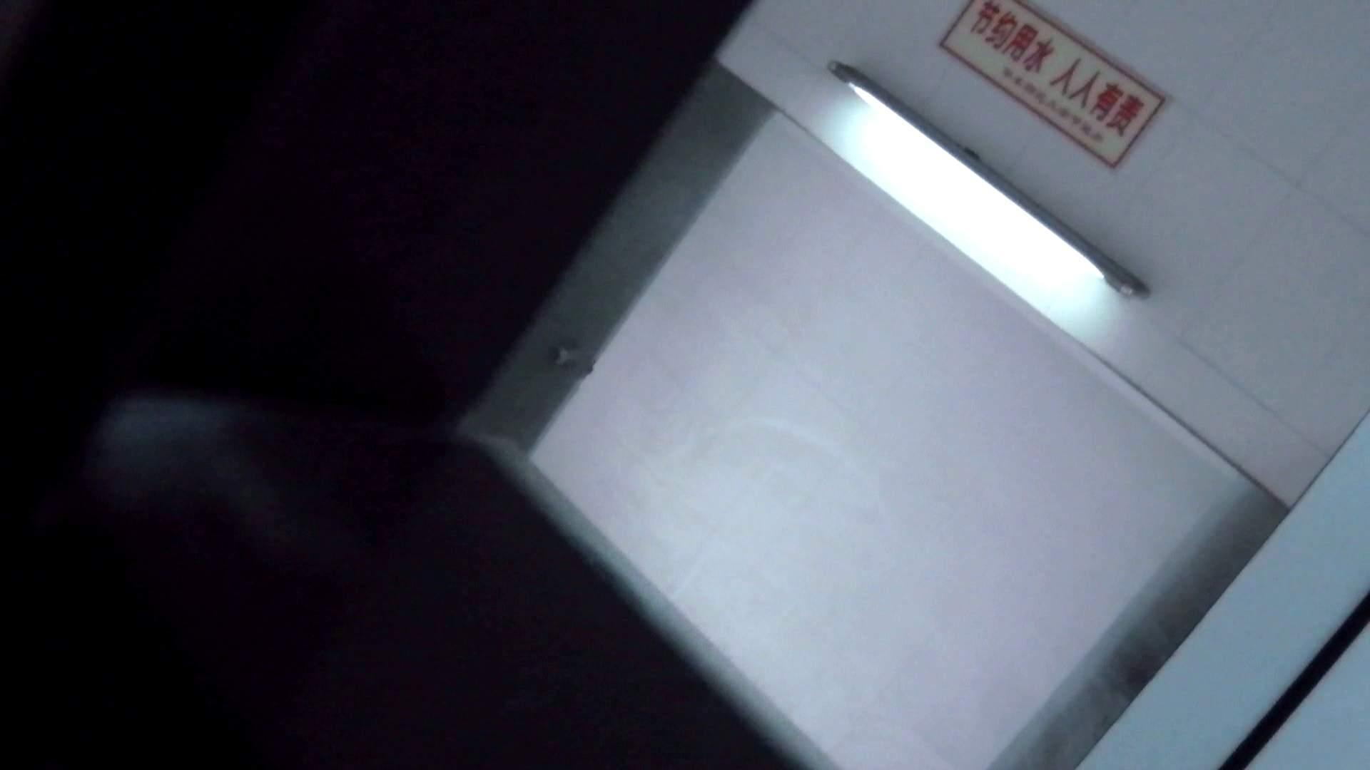 世界の射窓から ステーション編 vol.9 洗面所のぞき オマンコ動画キャプチャ 88枚 64