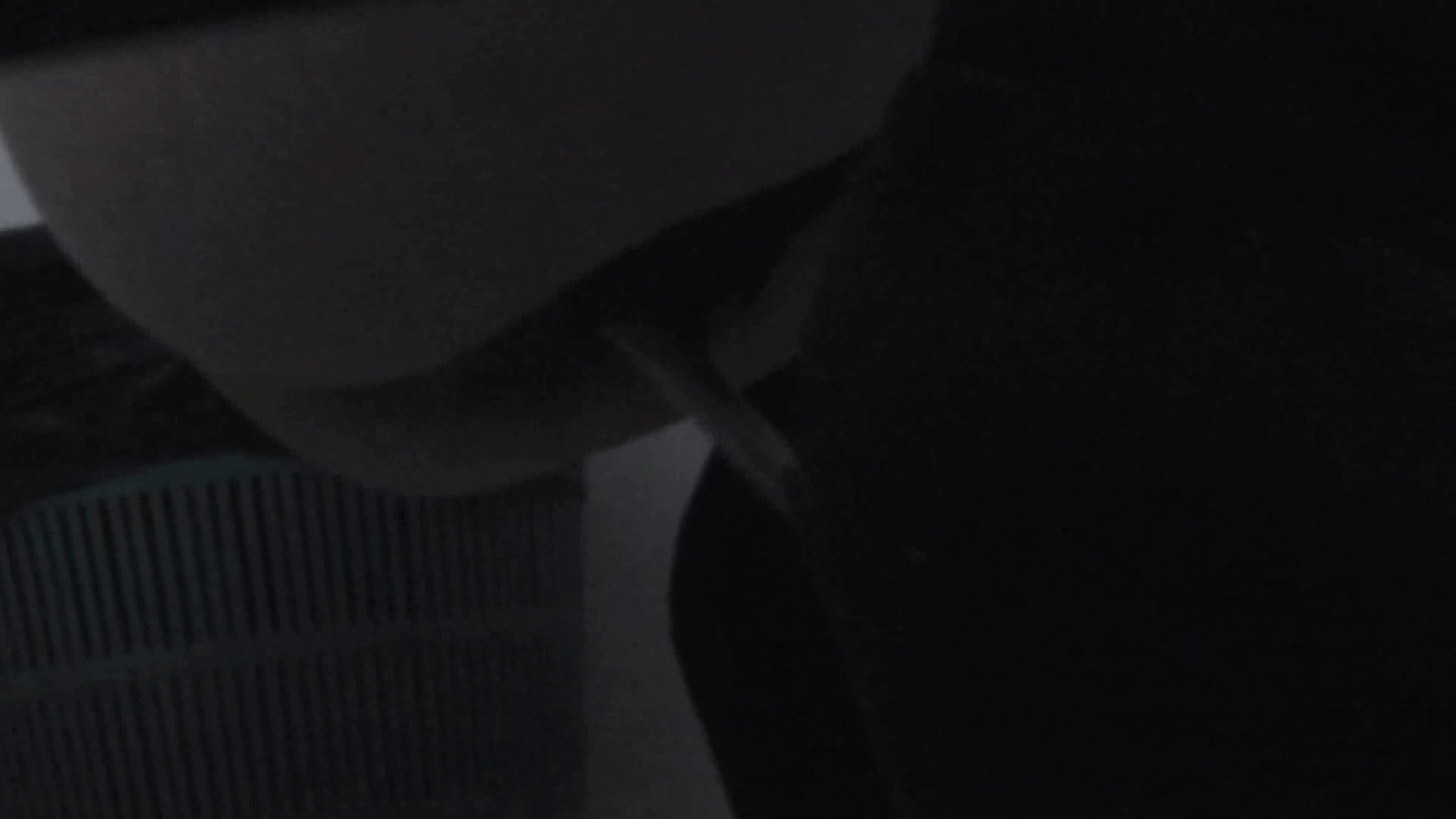 トイレ盗撮|世界の射窓から ステーション編 vol.16|怪盗ジョーカー