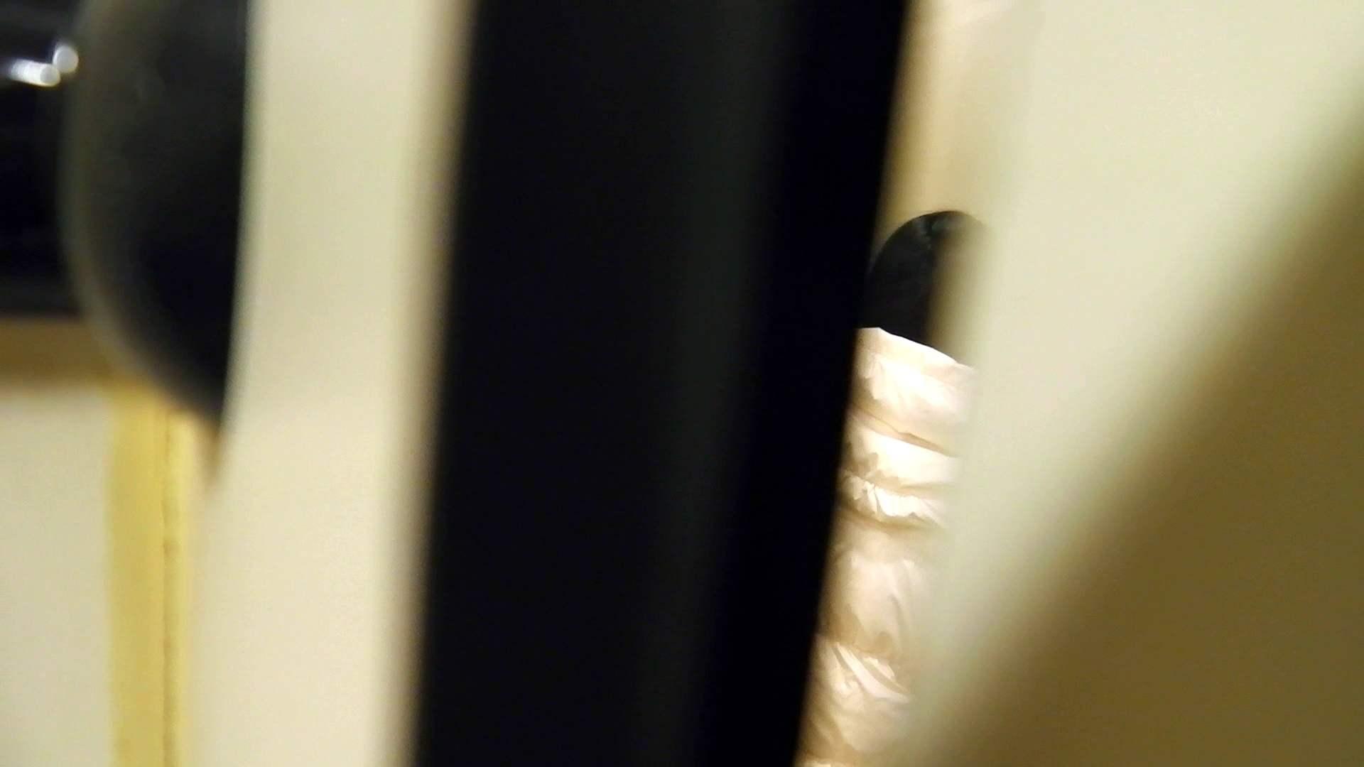 世界の射窓から vol.1 洗面所のぞき オマンコ動画キャプチャ 89枚 65