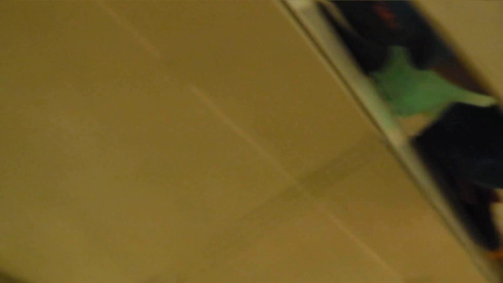 トイレ盗撮|世界の射窓から vol.25|怪盗ジョーカー