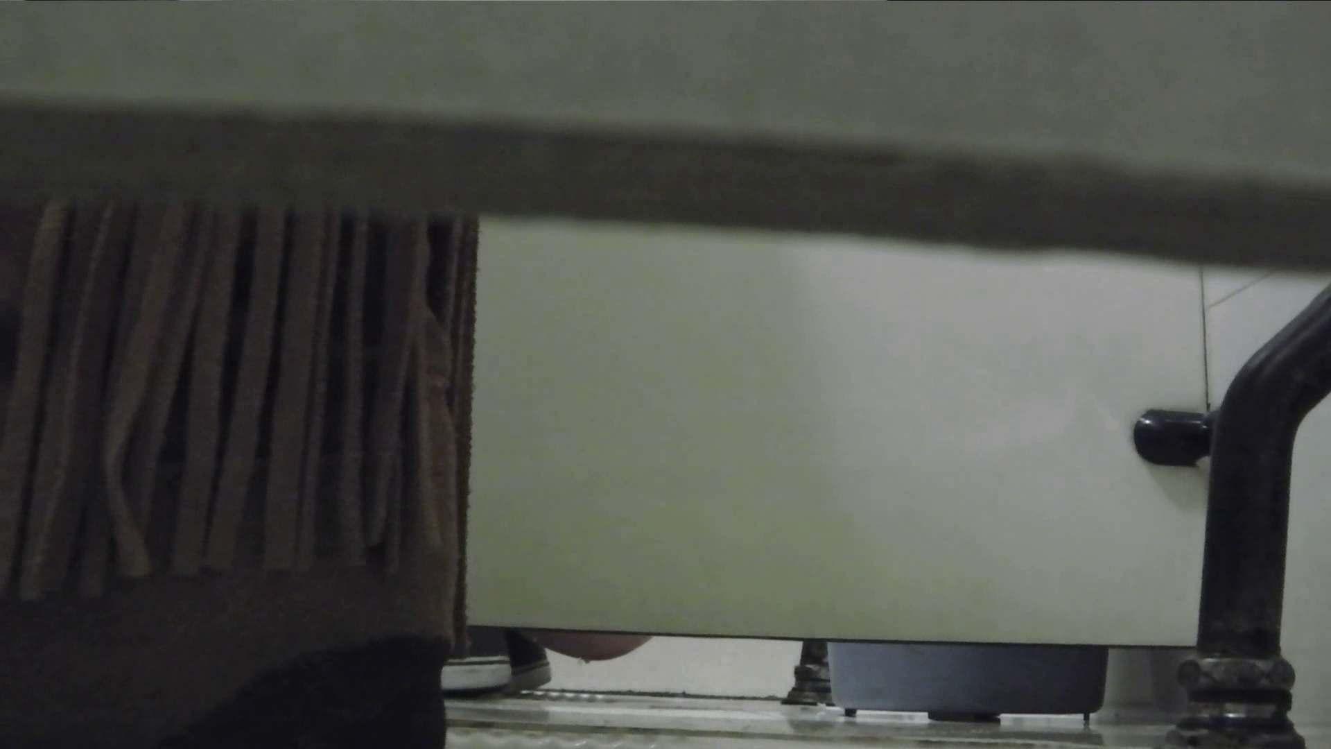 世界の射窓から vol.37 盛合せ 性交動画流出 101枚 33