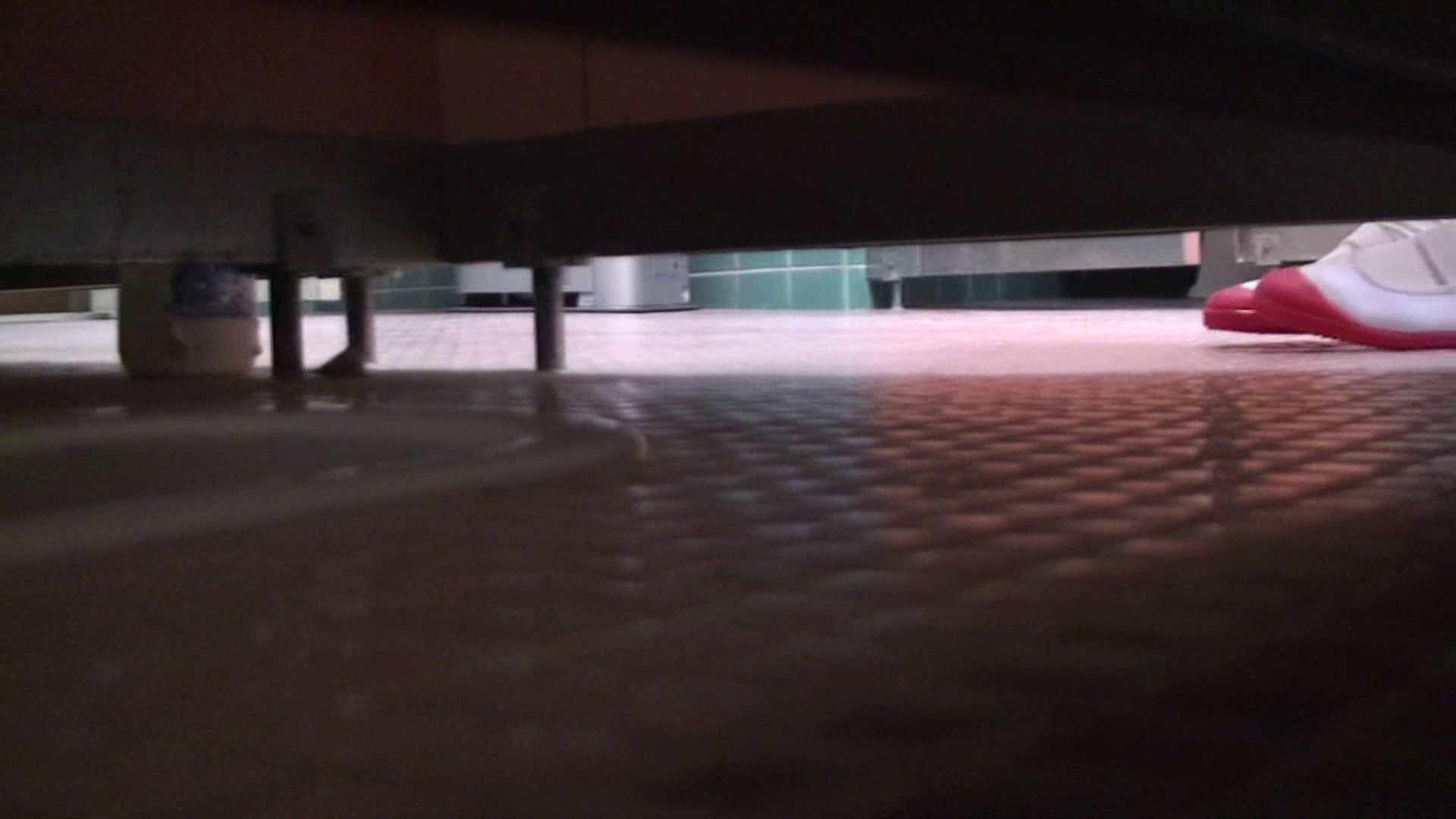 トイレ盗撮|雅さんの独断と偏見で集めた動画集 vol,12|のぞき本舗 中村屋