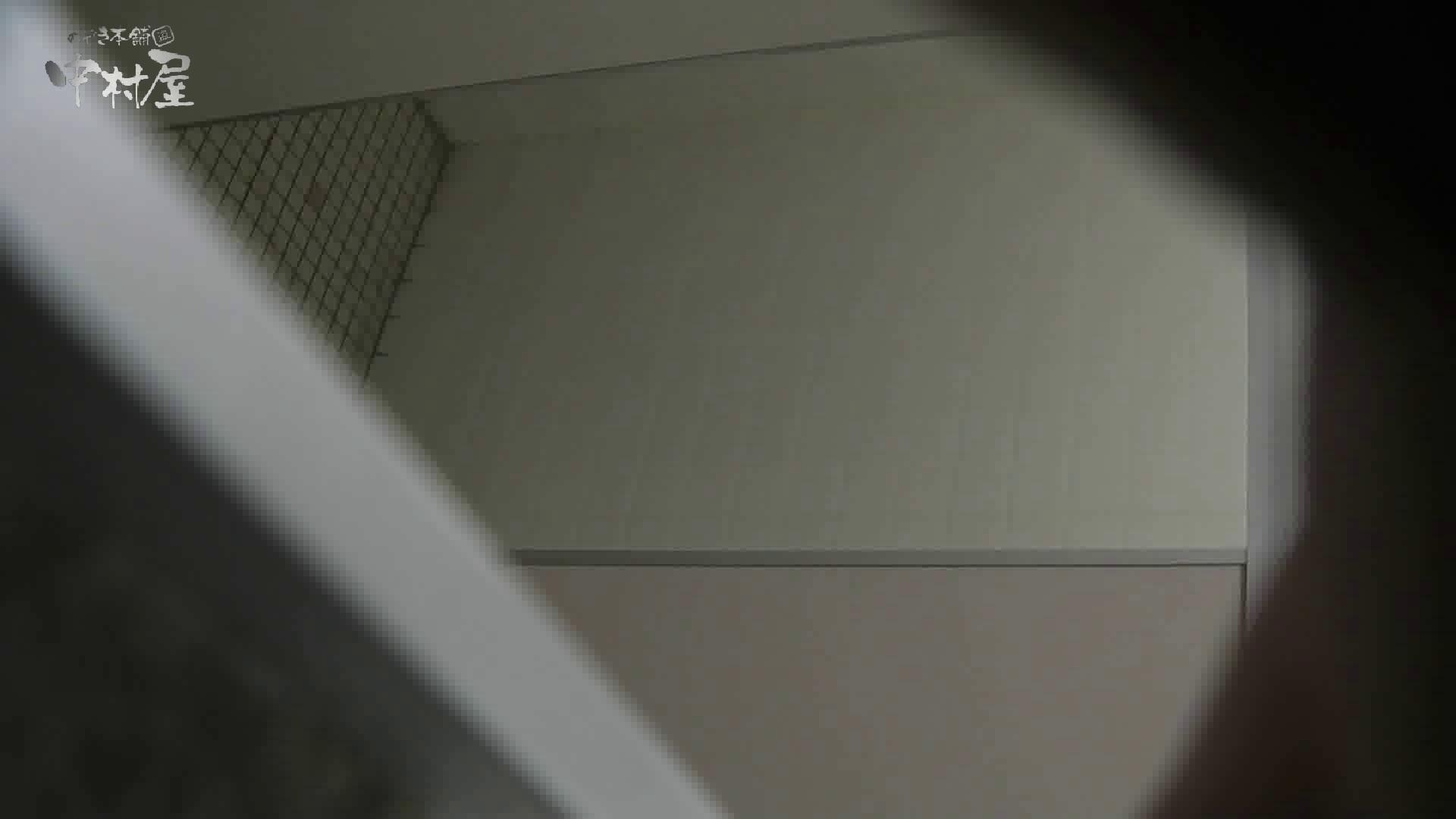 トイレ盗撮|洗面所突入レポート!!vol.21|のぞき本舗 中村屋