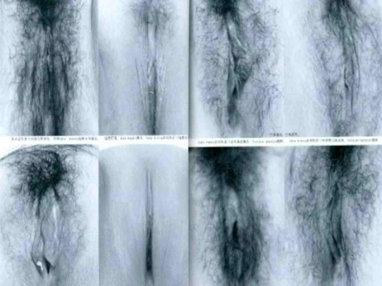 トイレ盗撮|日本女性の外性器①|のぞき本舗 中村屋