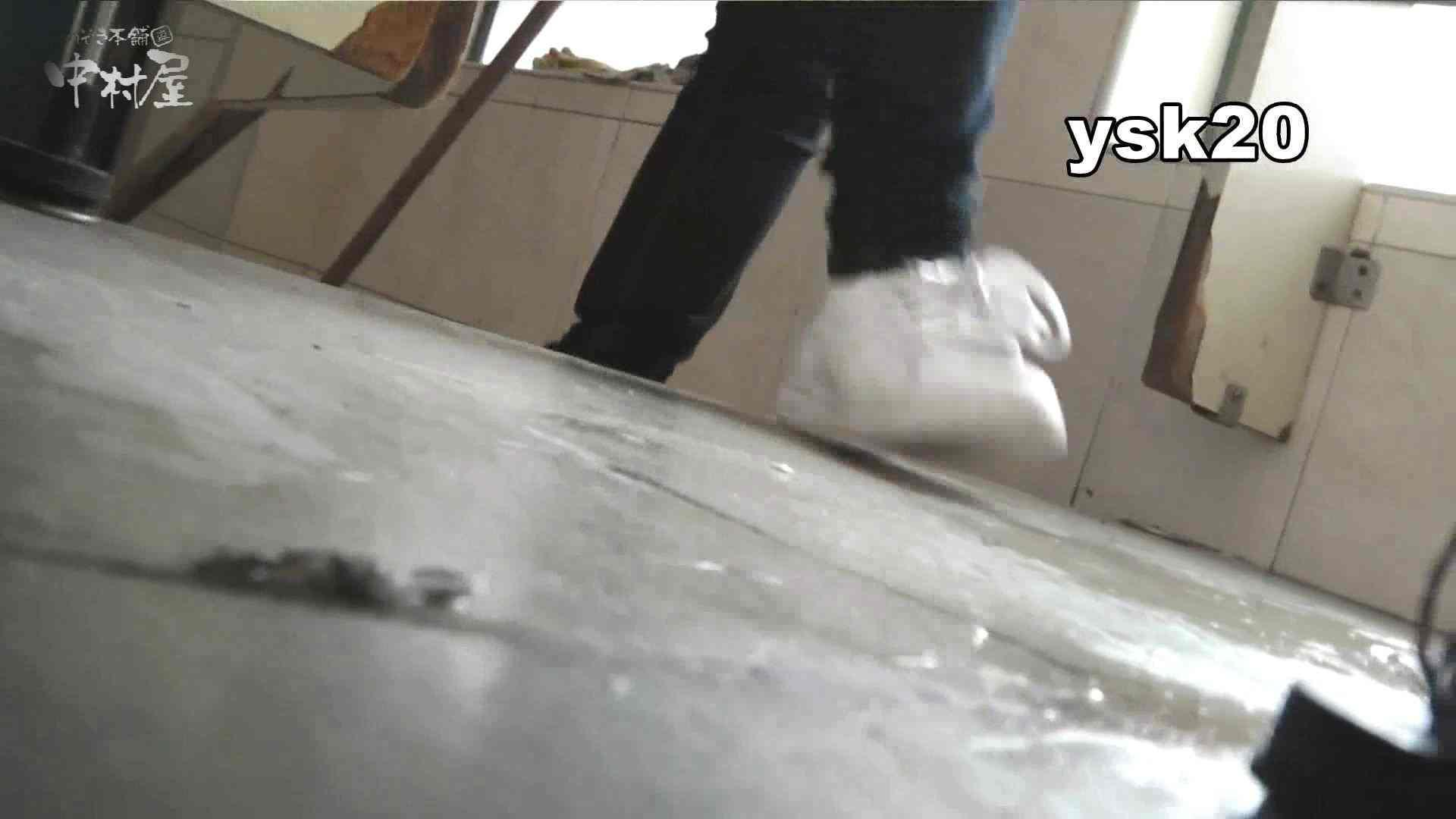 トイレ盗撮|【世界の射窓から】世界の射窓から vol.20後編|のぞき本舗 中村屋
