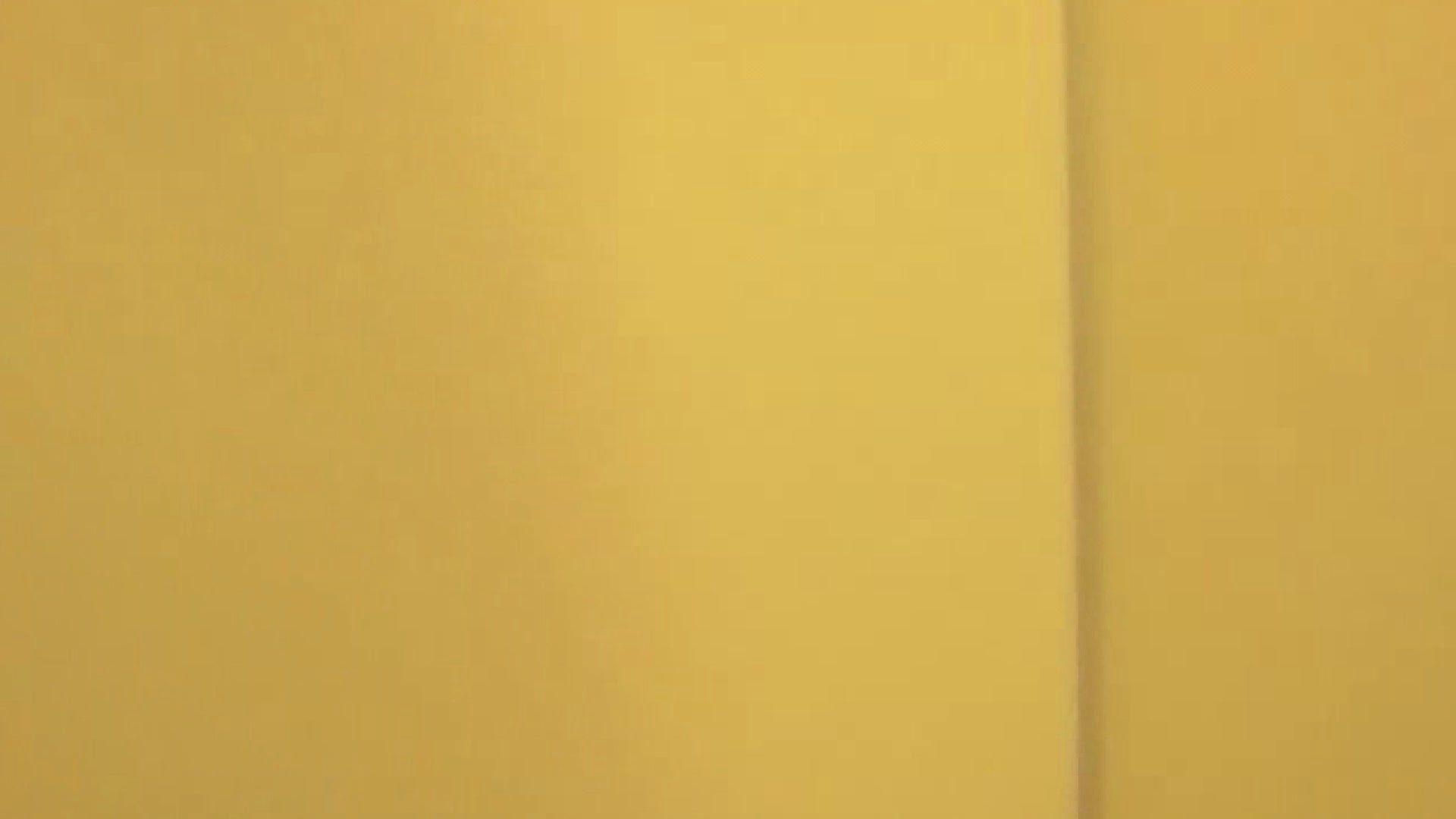 トイレ盗撮|女子トイレ盗撮若い嬢編vol.06|のぞき本舗 中村屋
