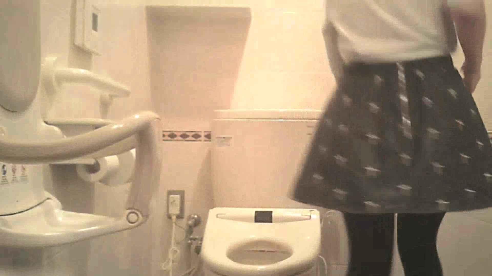 トイレ盗撮 実録!!綺麗なお姉さんのトイレ事情・・・。vol.27 ピープフォックス(盗撮狐)