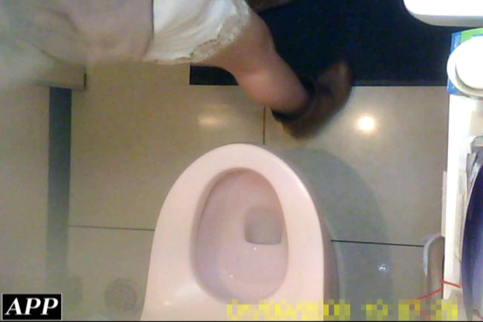 トイレ盗撮|3視点洗面所 vol.117|ピープフォックス(盗撮狐)