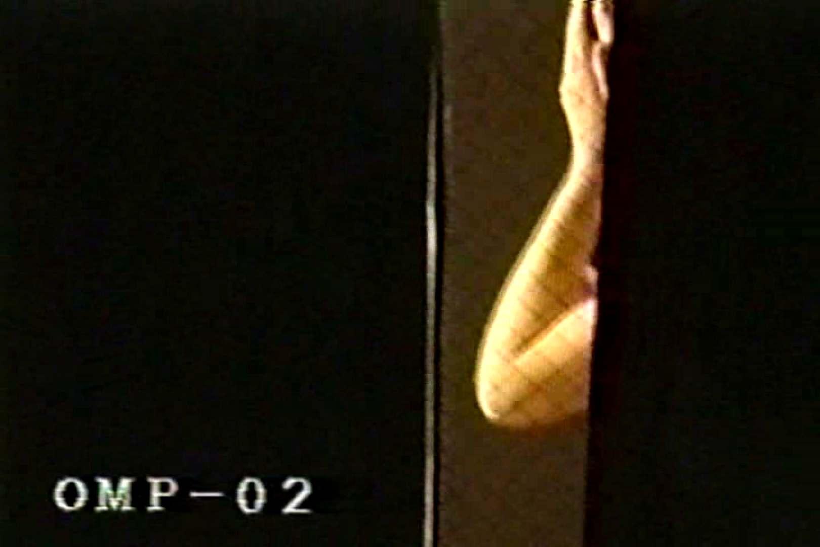 トイレ盗撮 究極の民家覗き撮りVol.2 ピープフォックス(盗撮狐)