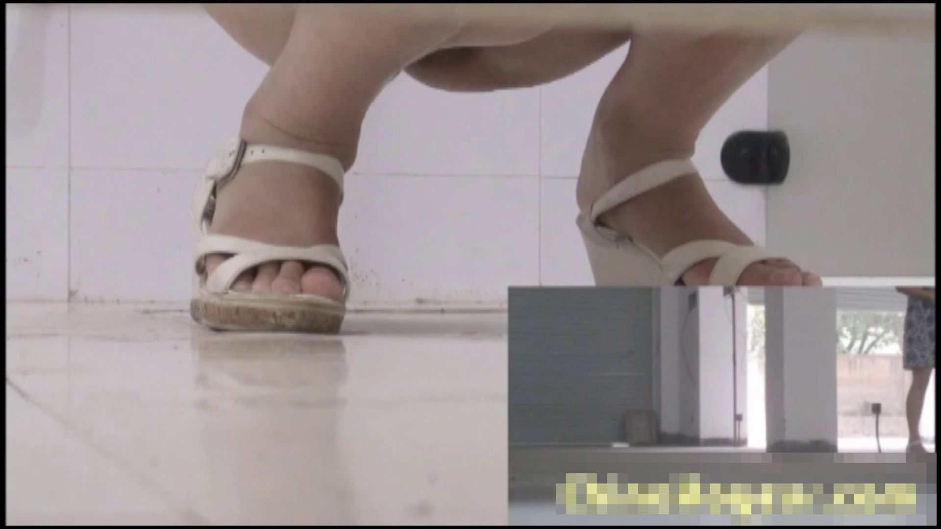 トイレ盗撮|洗面所で暗躍する撮師たちの潜入記Vol.21|ピープフォックス(盗撮狐)