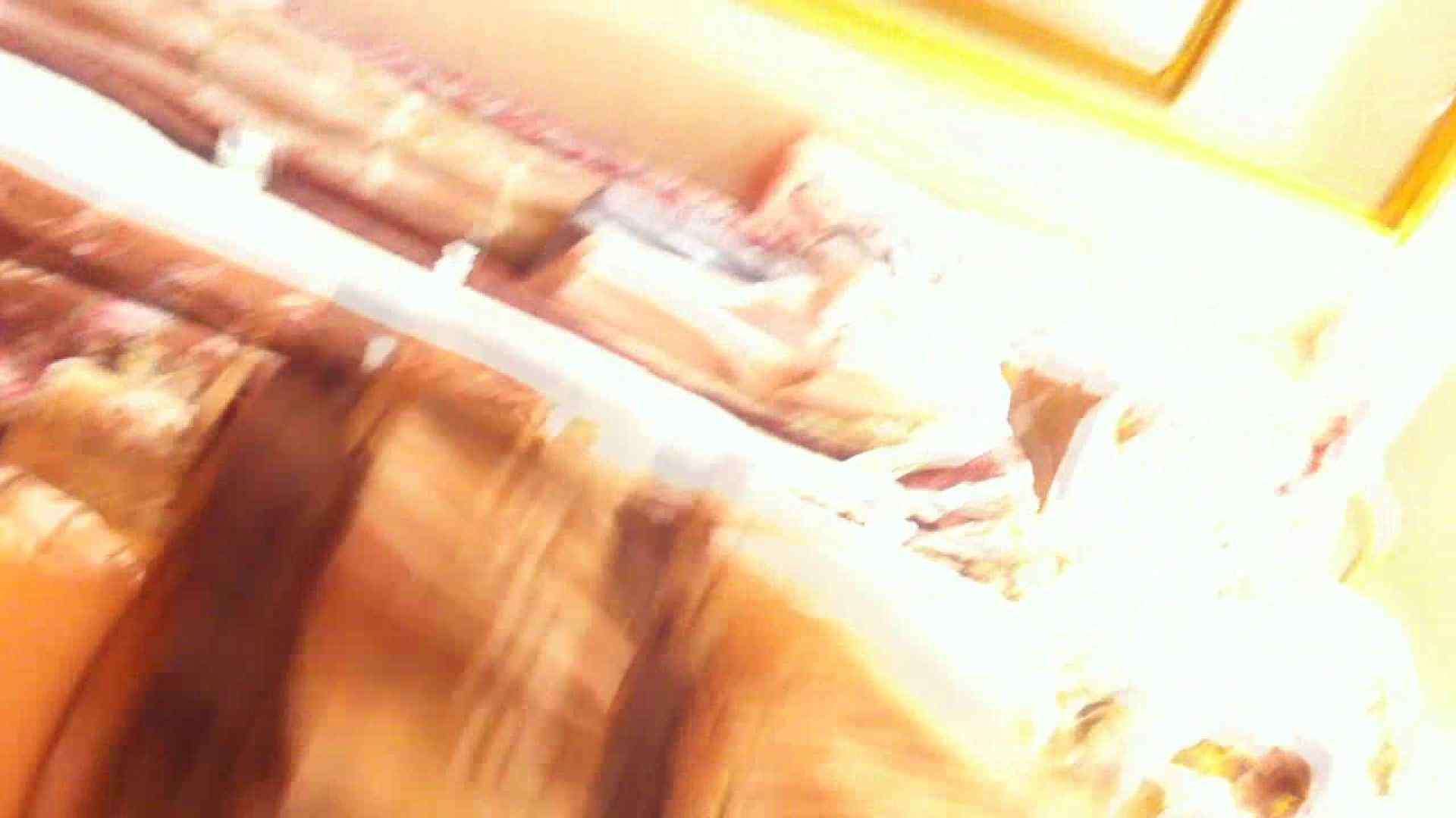 トイレ盗撮 フルHD ショップ店員千人斬り! 大画面ノーカット完全版 vol.29 ピープフォックス(盗撮狐)