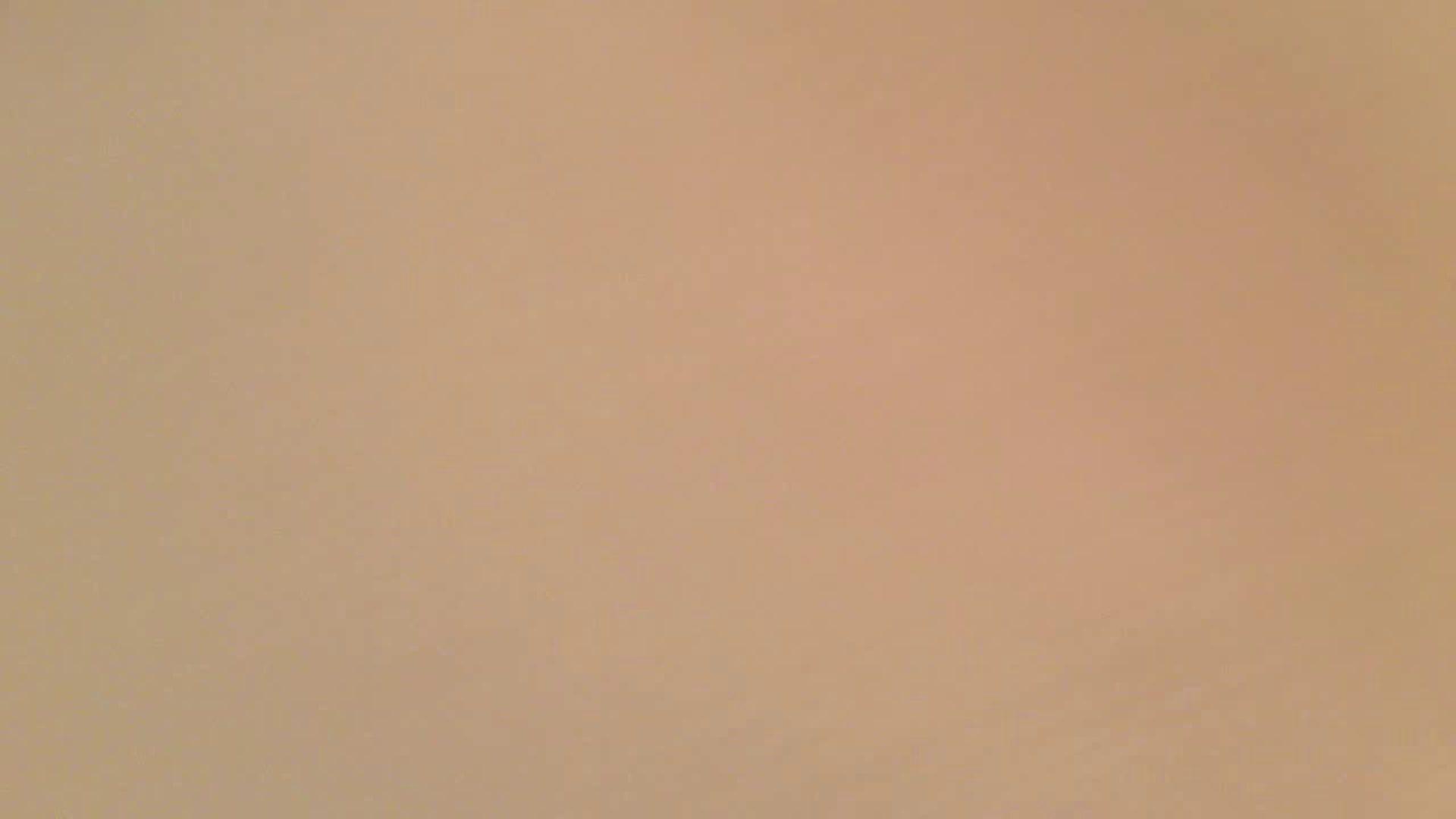 トイレ盗撮 フルHD ショップ店員千人斬り! 大画面ノーカット完全版 vol.52 ピープフォックス(盗撮狐)