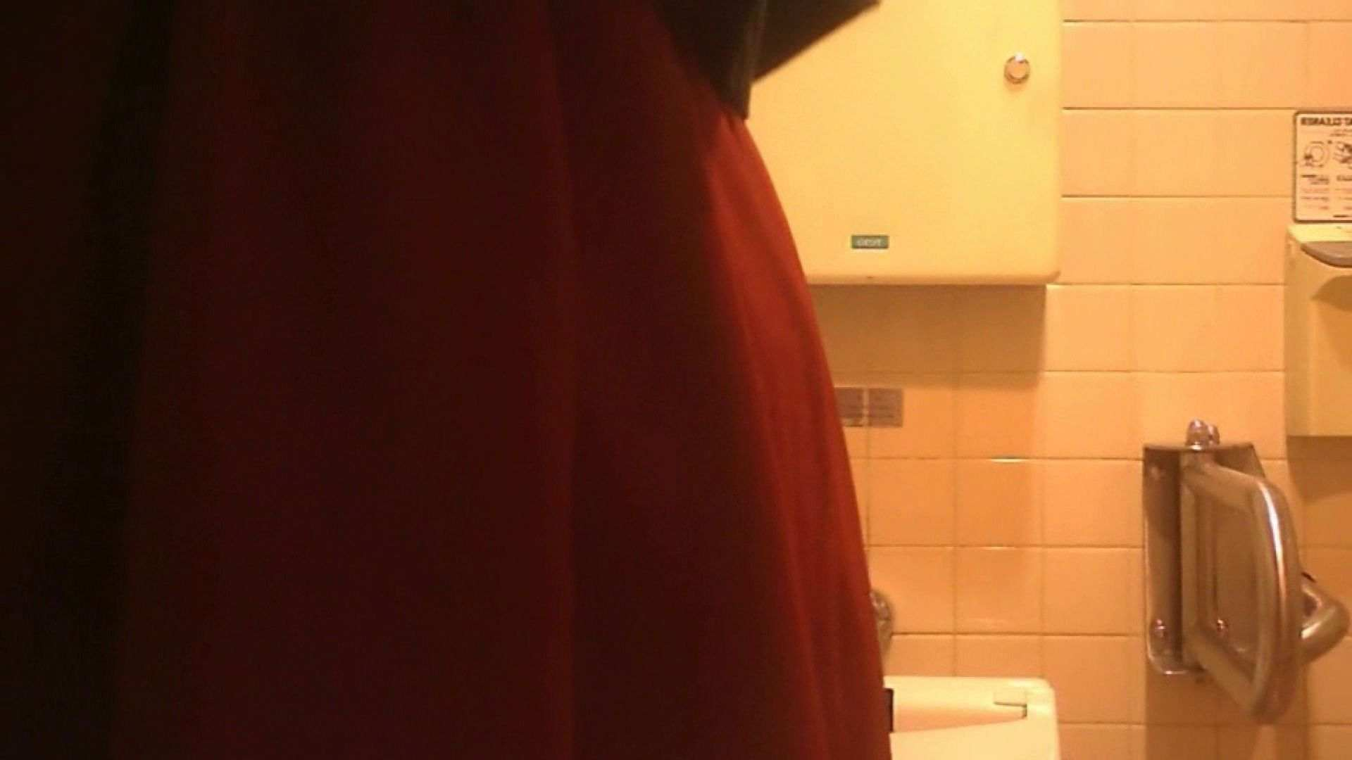 トイレ盗撮|お姉さんの恥便所盗撮! Vol.27|ピープフォックス(盗撮狐)