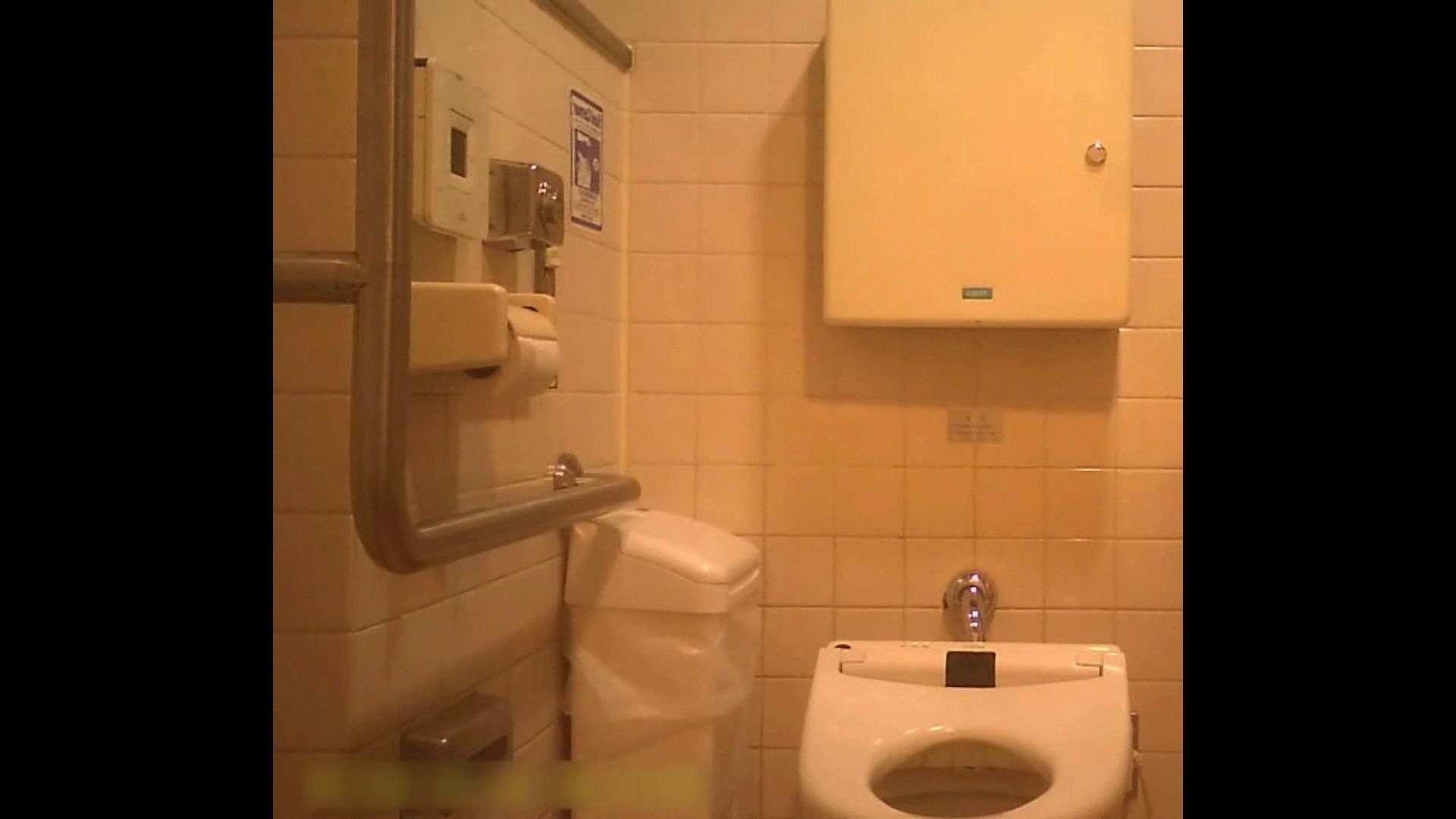 トイレ盗撮|お姉さんの恥便所盗撮! Vol.30|ピープフォックス(盗撮狐)